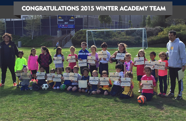 WinterAcademy-2015-conclude